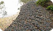 Укрепление пруда георешеткой